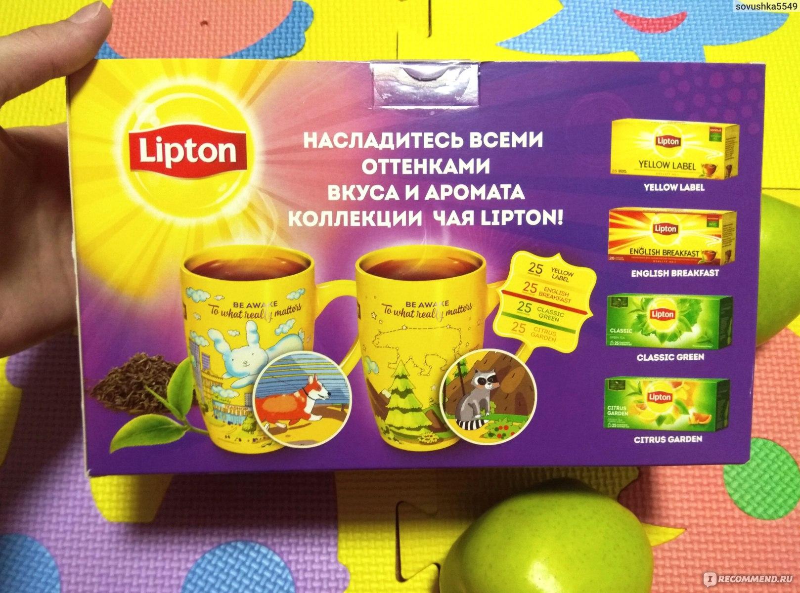 Чай Lipton в Беларуси. Сравнить цены и поставщиков промышленных товаров 828