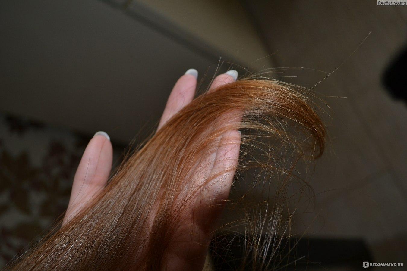 Как избавиться от сухости волос в домашних условиях 31