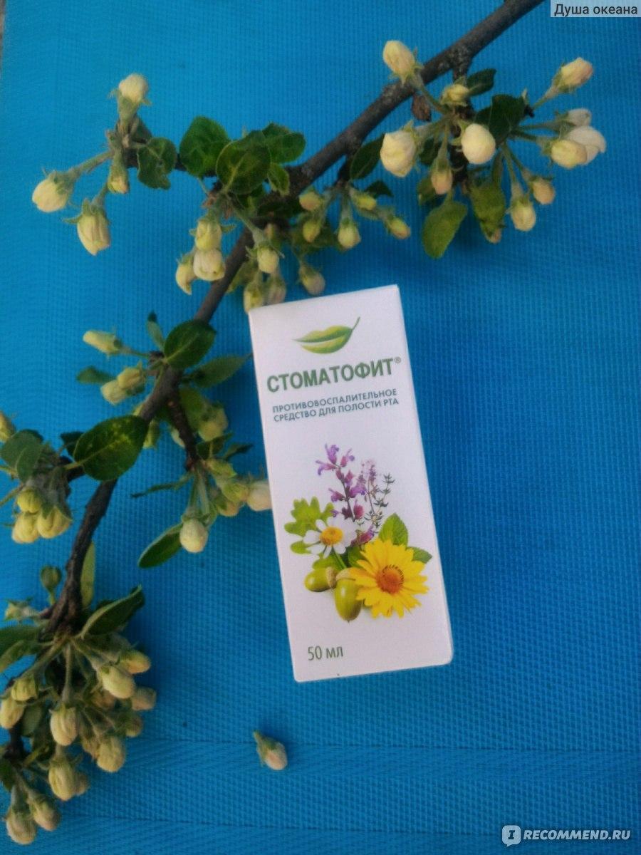 Противовоспалительное средство растительного происхождения ...