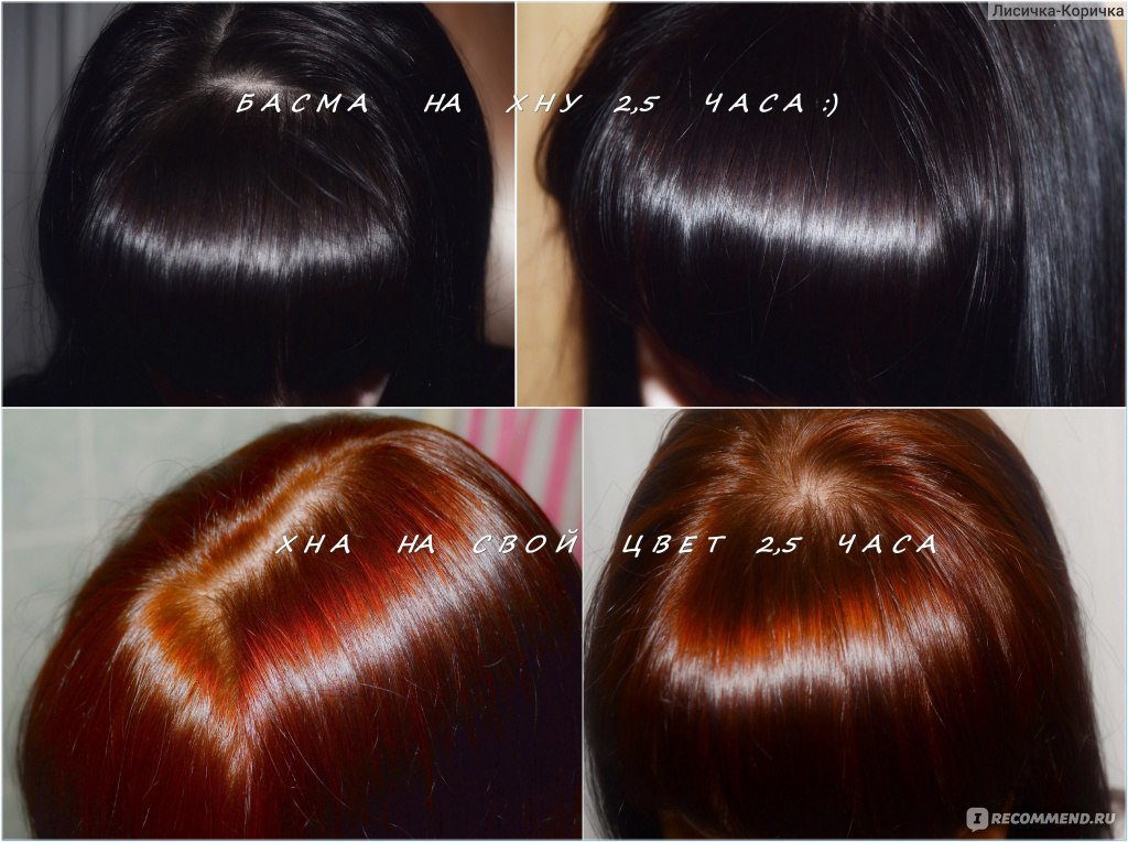 Окрашивание волос басмой в домашних условиях