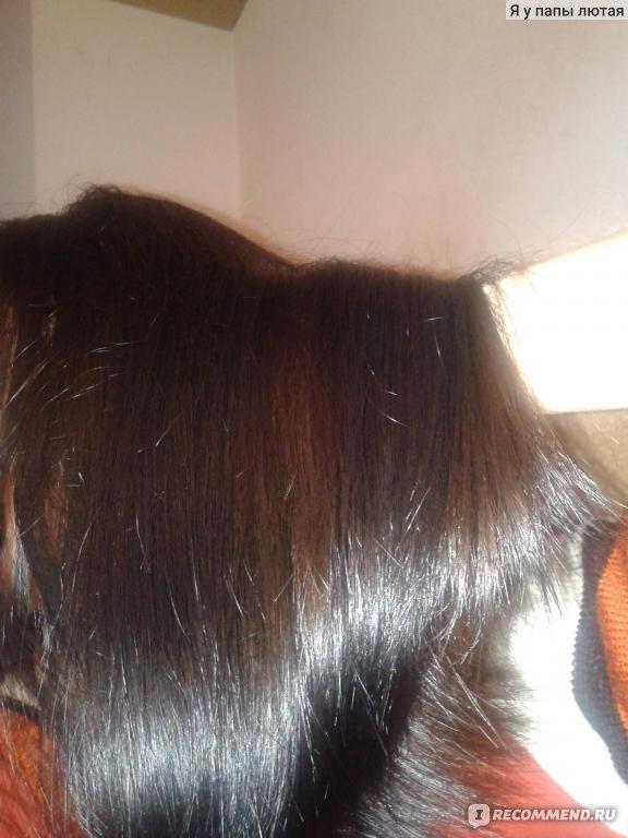 недорогая но хорошая краска для волос