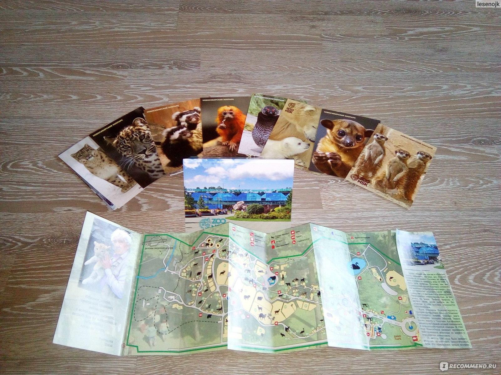 Набор открыток новосибирский зоопарк