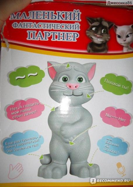 Все виды говорящего кота