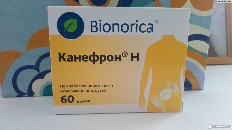 От простатита канефрон простатит у мужчин чем влияет на половую жизнь