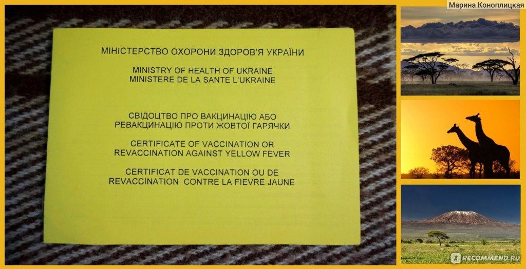 Как сделать прививки от малярии