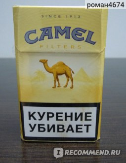 Сигареты camel купить в спб фуд сити оптом сигареты цена
