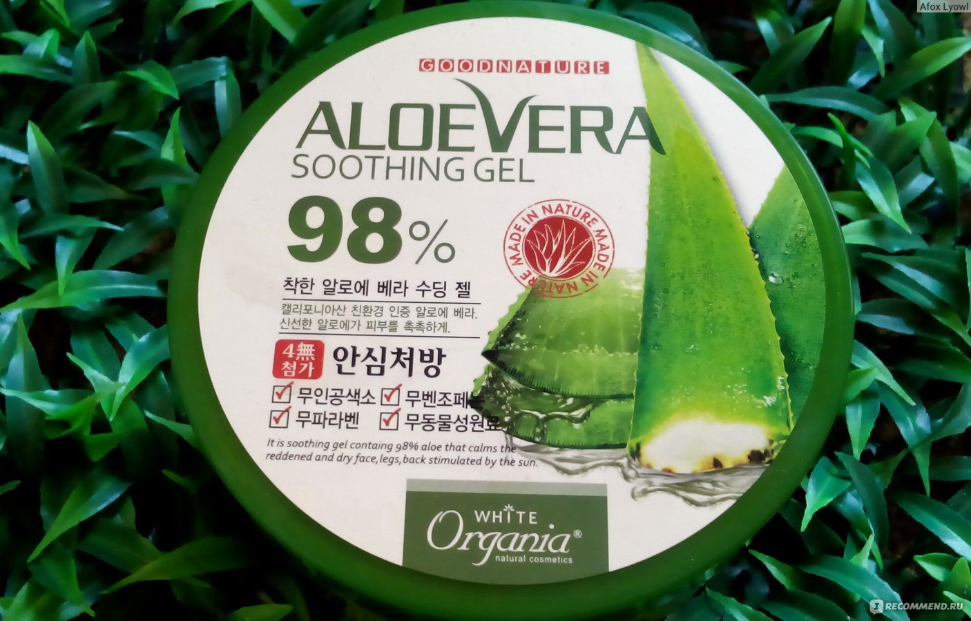 an introduction to the nature of aloe