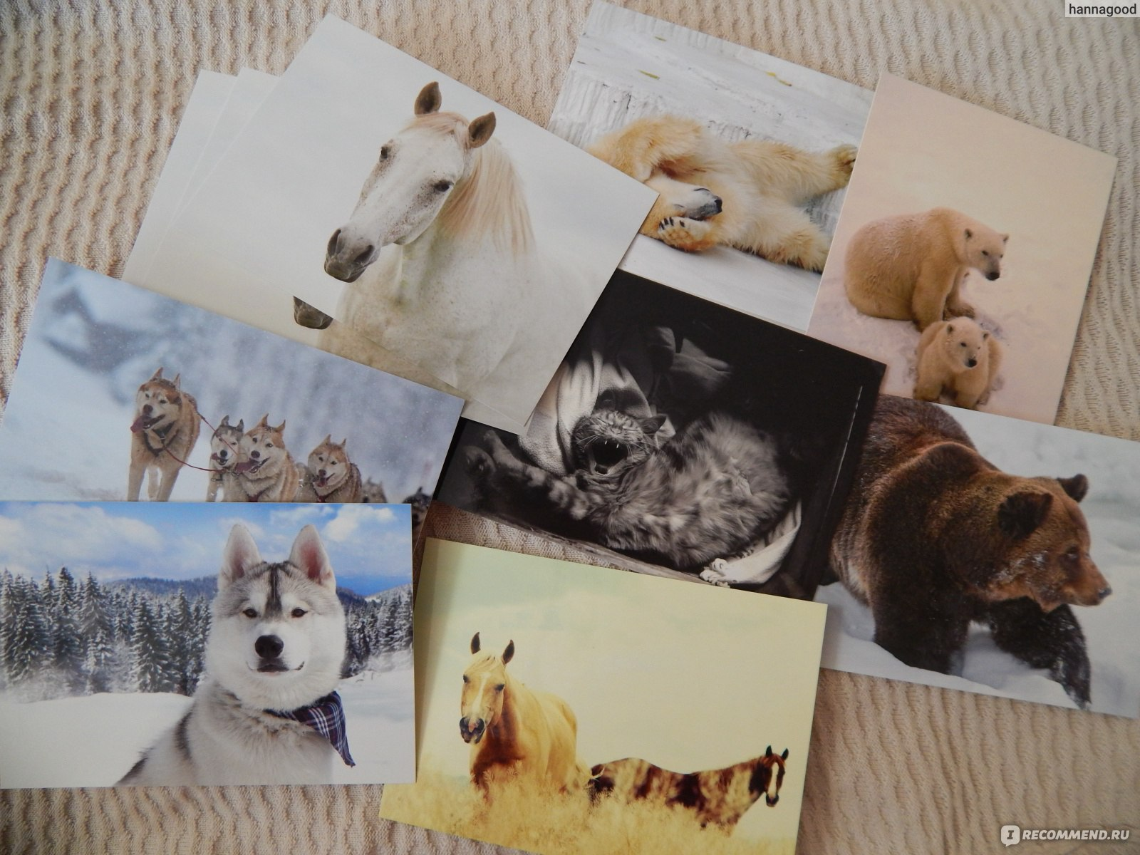 Завязать, открытки постмания