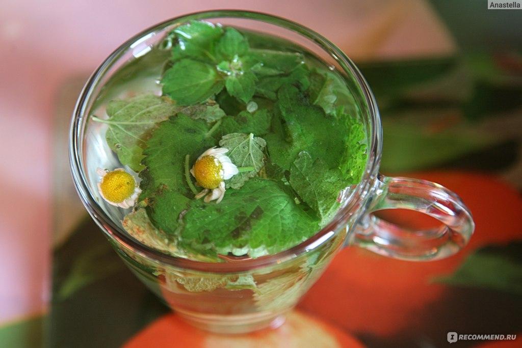 чай из ромашки для похудения отзывы