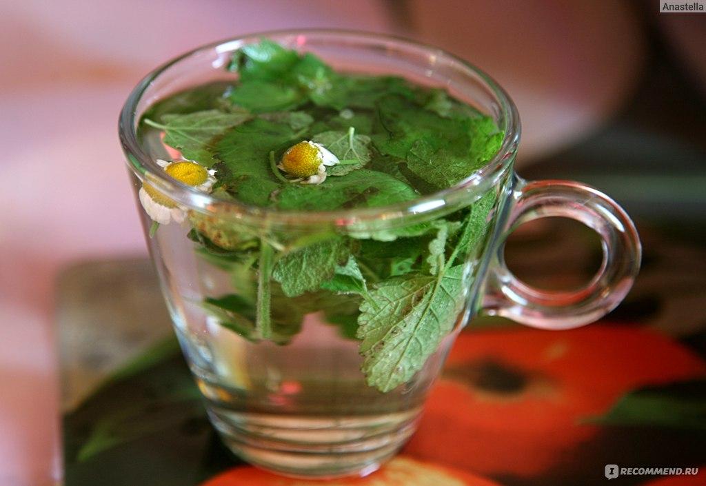 Как сделать чай из мелиссы рецепт