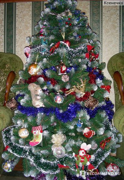 Ель Triumph Tree