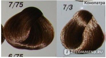 Палисандр цвет волос фото