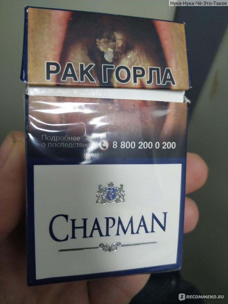 chapman blue сигареты купить