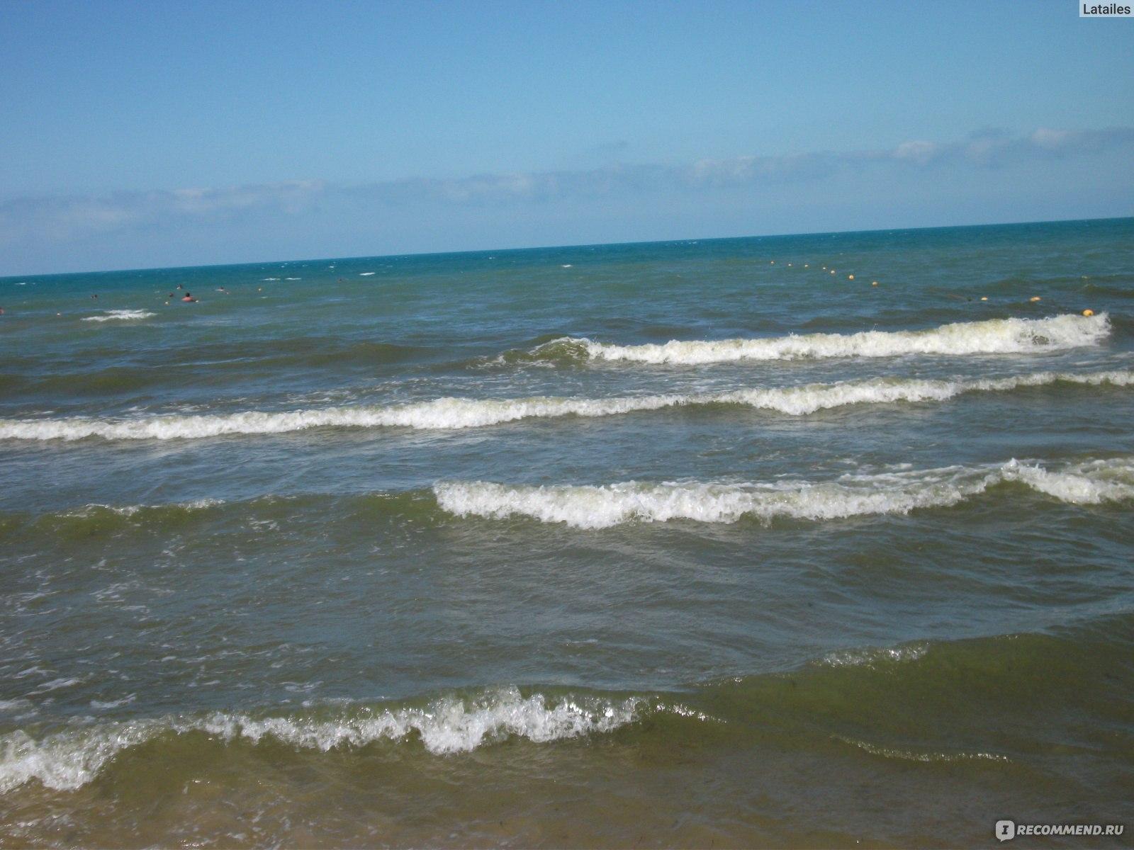 чтобы фото цветущего моря в джемете отвечает