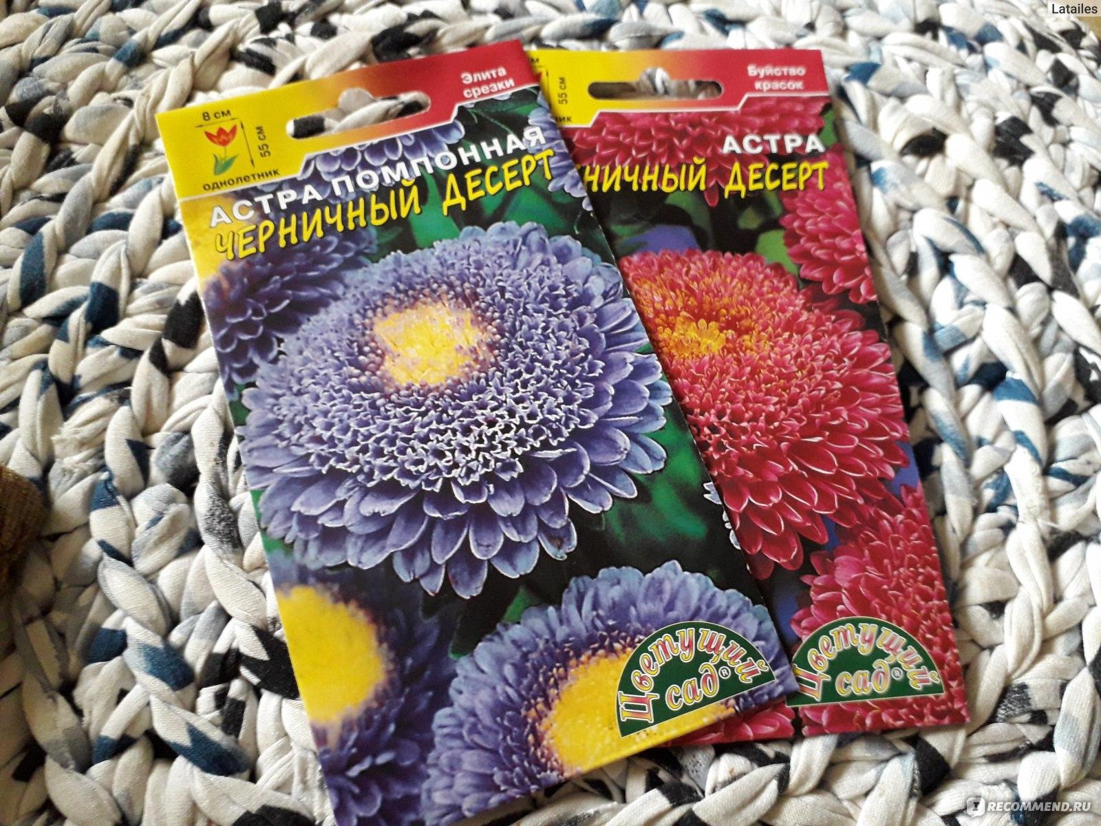 Где можно заказать семена цветов эйвон набор косметики для макияжа купить спб