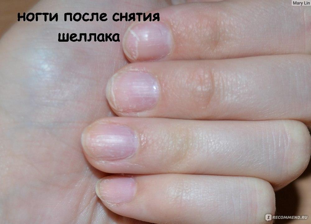 Маникюр Гель Лаком Фото Новинки