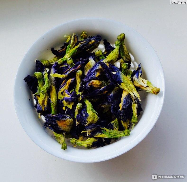 синий пурпурный чай