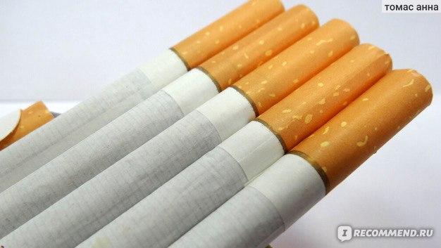 купить сигареты липецкой табачной фабрики