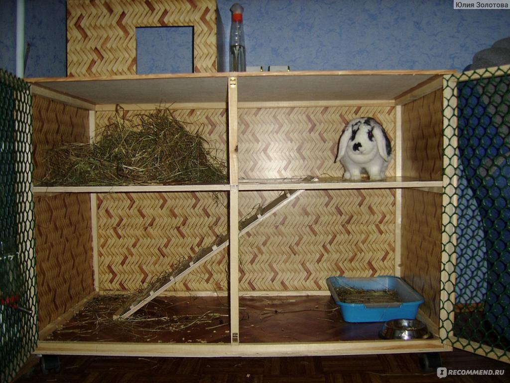 Жильё для кроликов своими руками 94