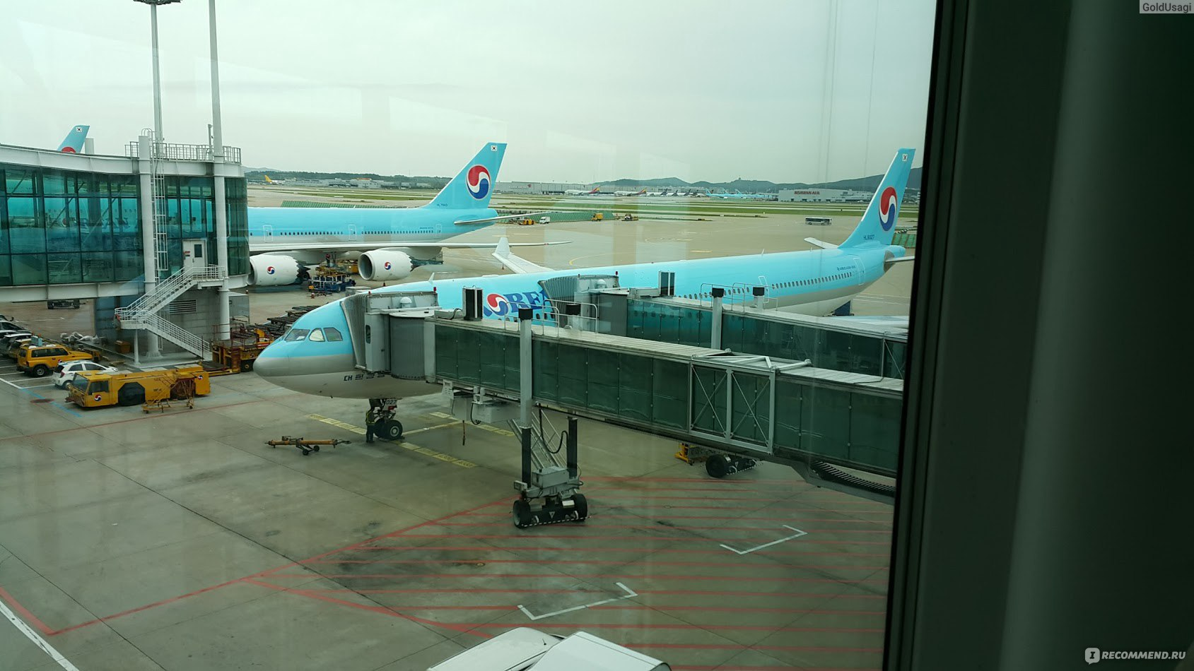 Согласно сведениям онлайн-табло аэропорта домодедово, к настоящему моменту несколько десятков рейсов различных авиакомпаний отправлены с задержкой или до сих пор ожидают вылета.