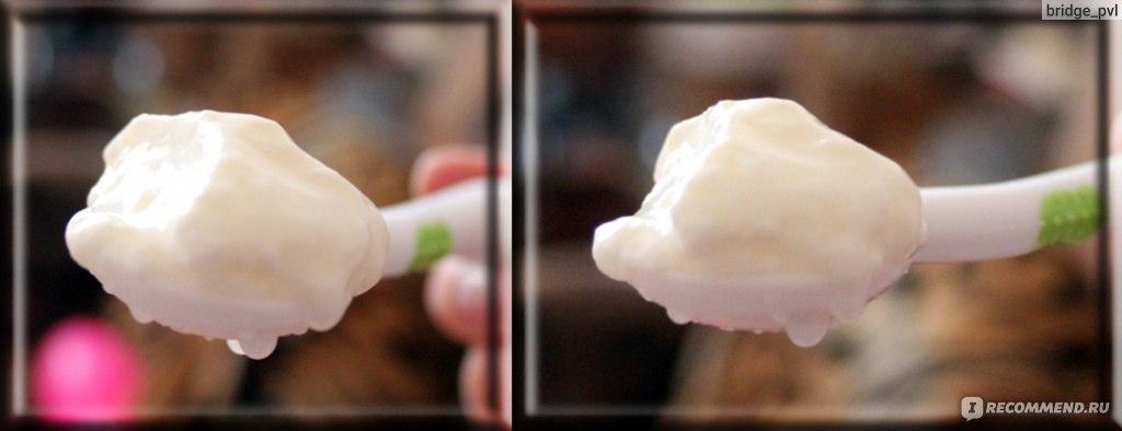 как продержать сутки без молока молочный гриб