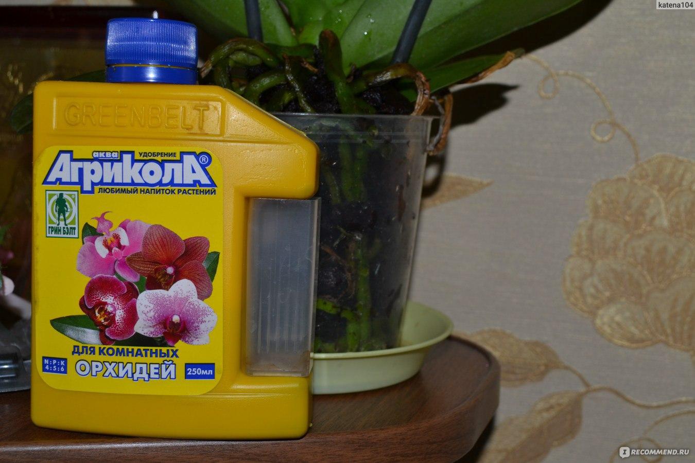 Фото подкормки для цветов