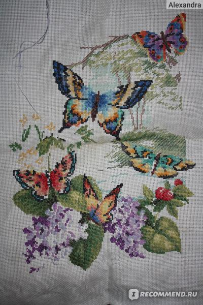 Dimensions бабочки схемы