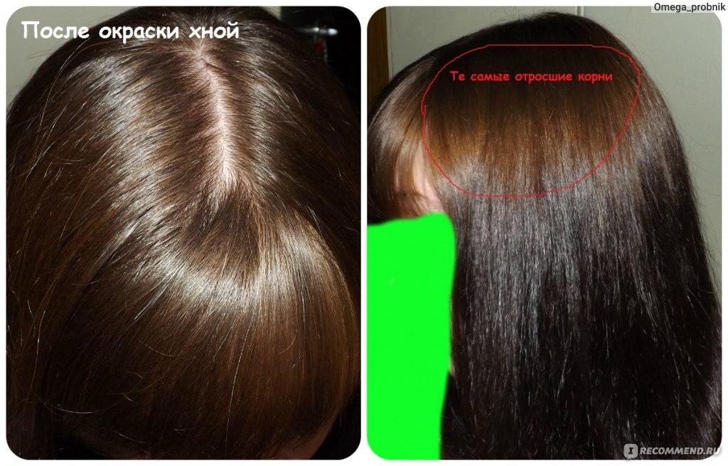 Окрашивание волос хной в шоколадный цвет отзывы