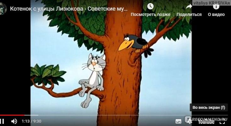 Приключения котёнка с улицы Лизюкова. Виталий Злотников ...