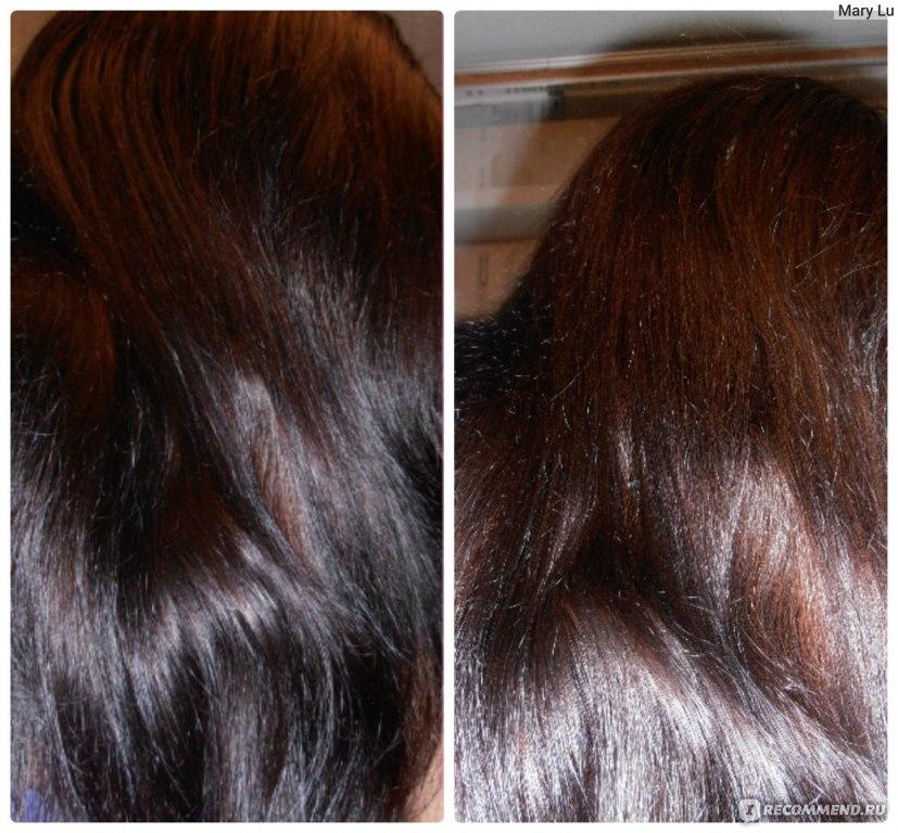 красят волосы мокрые или сухие