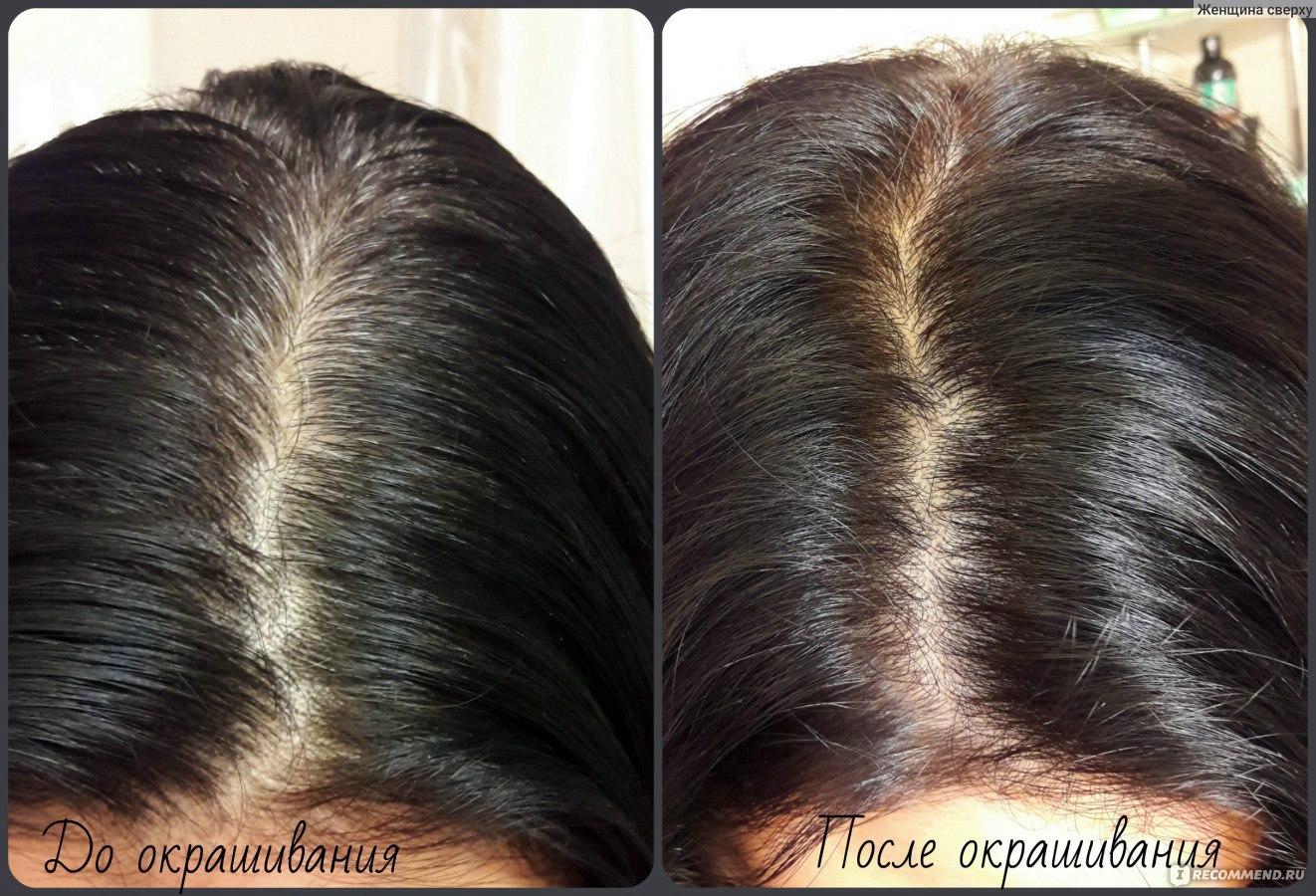 Краска для волос профессиональная для закрашивания седых волос