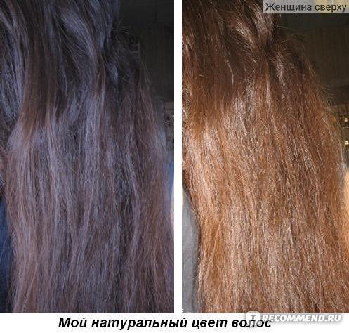 морозный каштан цвет волос фото