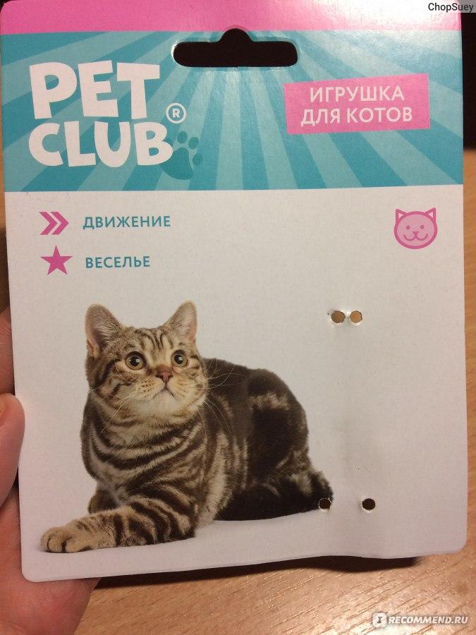 Игры с игрушками кот