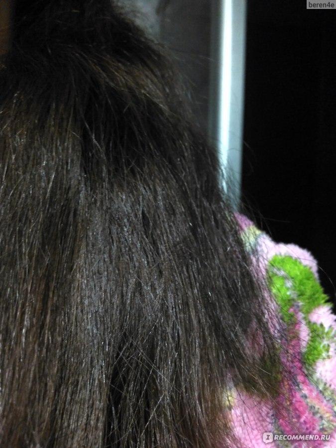 шампунь кора от выпадения волос