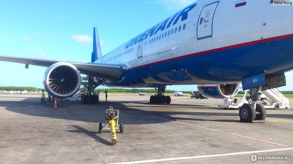 оренбургские авиалинии фото самолетов почти парадоксально, что