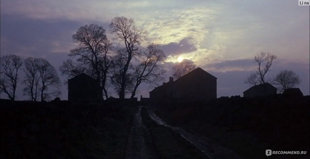 Wuthering heights md
