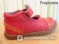 592f375816d849 Туфли Kickers kids Tealia - «Почти идеальные!» | Отзывы покупателей