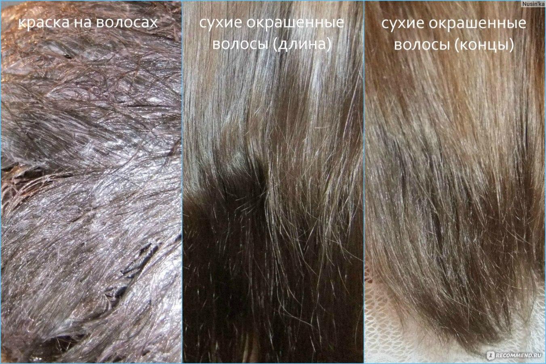 Какой краской покрасить волосы в светло пепельный цвет волос