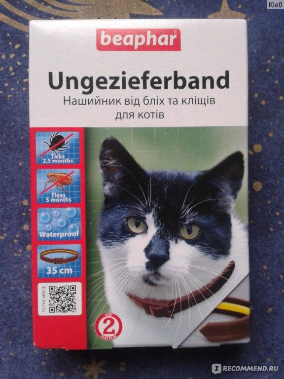 Против блох для кошек