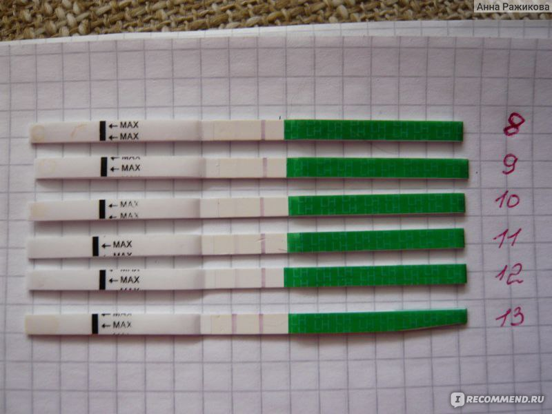 eviplan тест на овуляцию инструкция