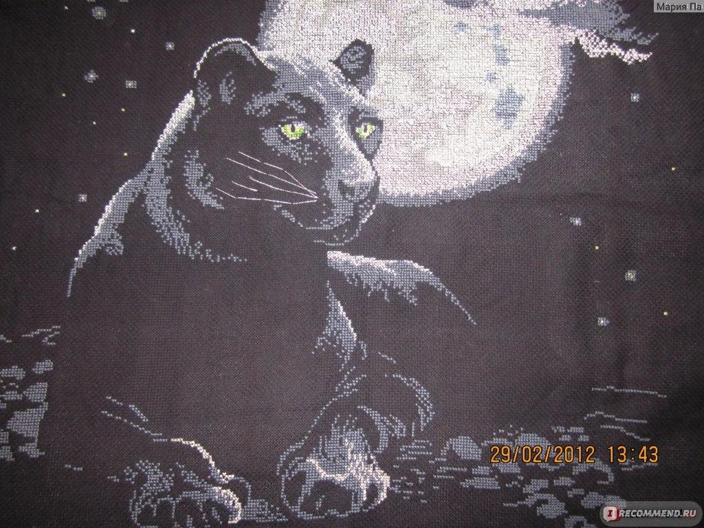 Схема пантера на фоне луны