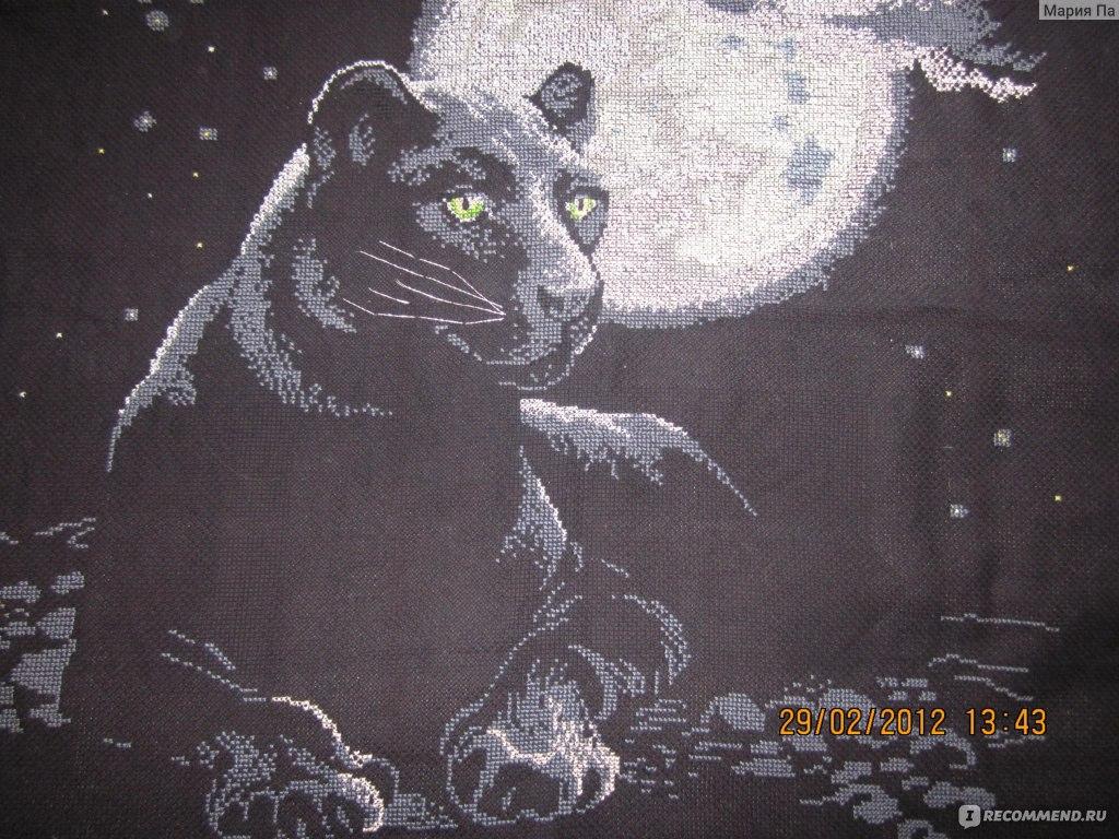 Вышивка пантеры при луне