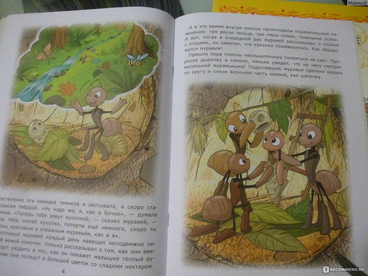 муравьев то там 5 книга