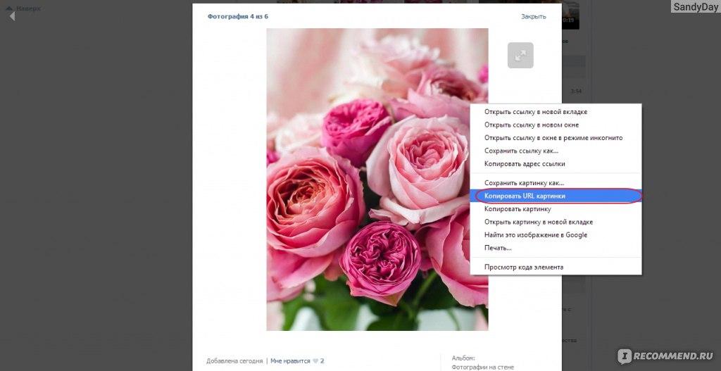 image На каких сайтах знакомств зарегистрирован человек