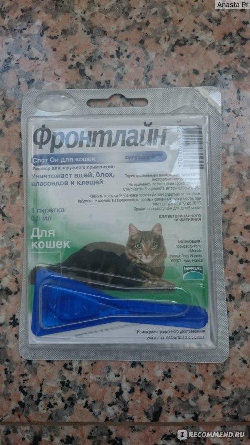 фронтлайн спот он для кошек инструкция по применению - фото 9