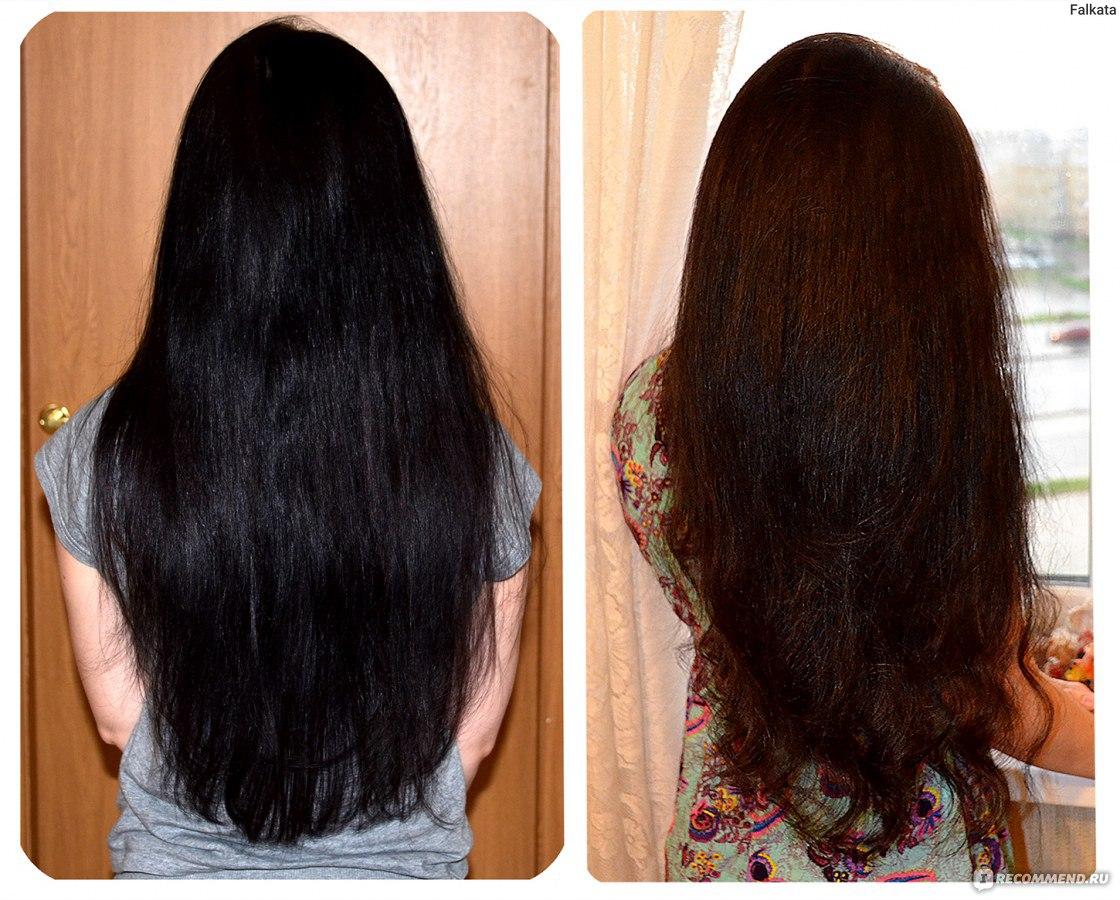 Чем восстановить волосы от выпадения в домашних  547
