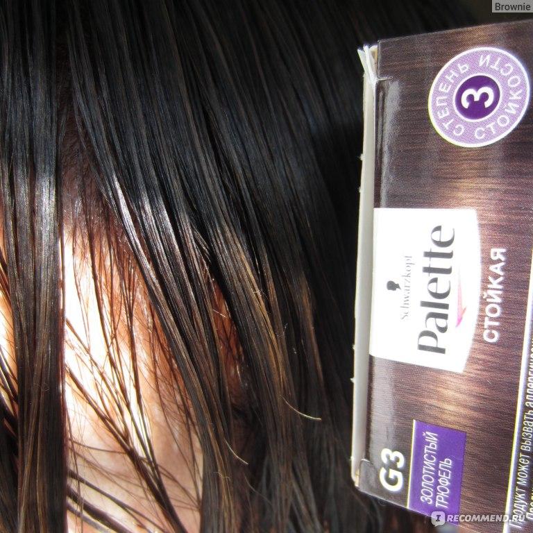 Золотистый трюфель цвет волос