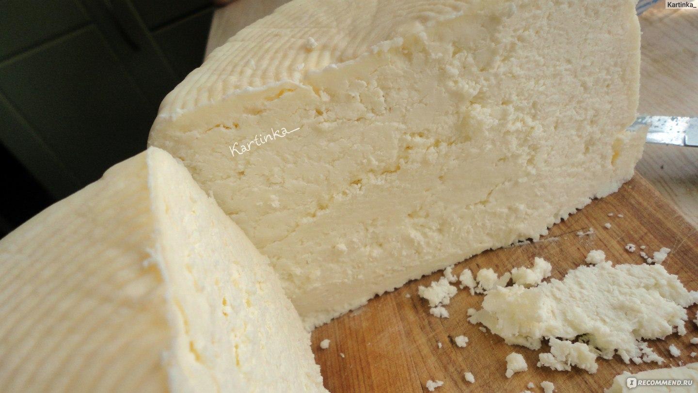 Как сделать сыр в домашних условиях без закваски