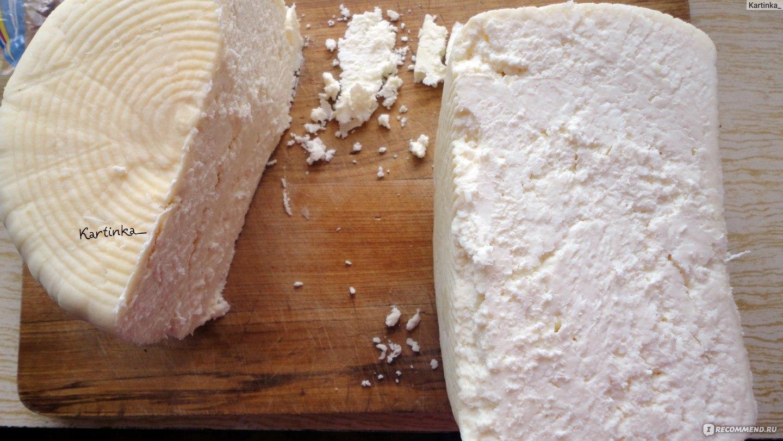 Сыр в домашних условиях из заквасок
