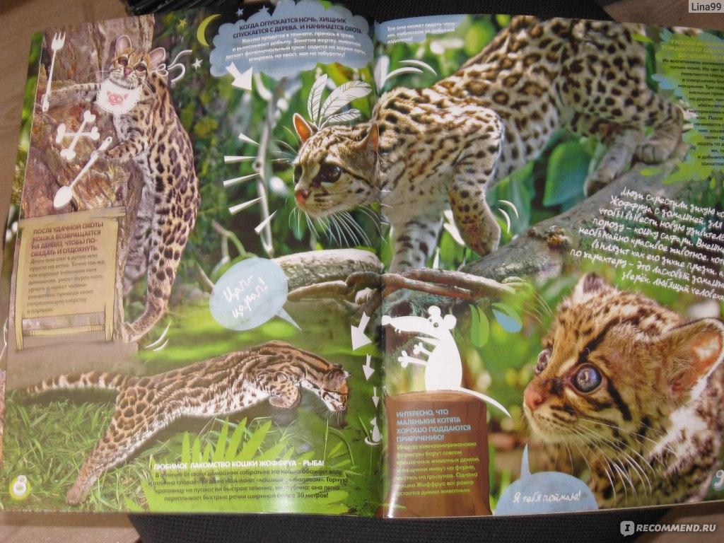 веселые картинки журнал для детей